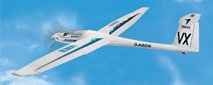 Multiplex Heron high performance RC electric glider